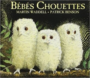 bb chouettes