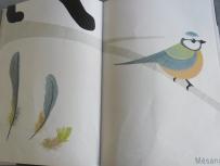 livre enfant (16)