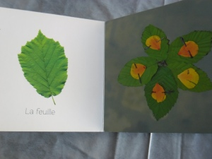 livre enfant (8)
