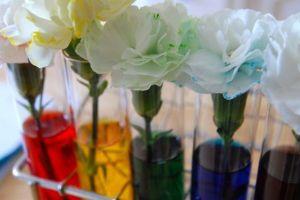 activité couleur enfant sensorielle