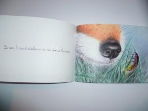 livre-lilavril-montessori-hiver-noel-bonheur-3